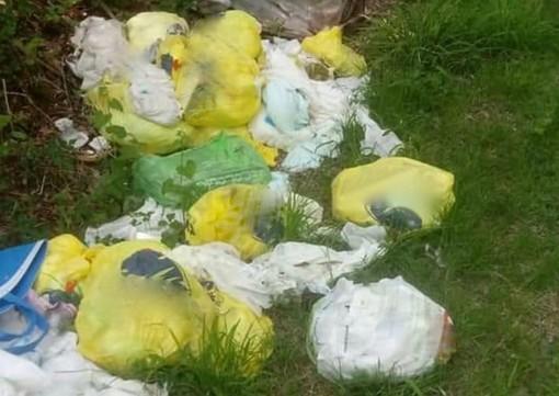 Vedano Olona: spazzatura abbandonata nei boschi